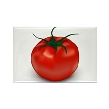 Red Tomato ! Rectangle Magnet (10 pack)