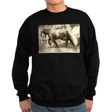 Cute Friesian Sweatshirt