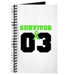 Lymphoma Survivor 3 Years Journal