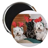 Credible Critter Westie & Scottie Christmas Magnet