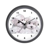 Bichon Frise Wall Clock