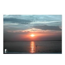 "Cozumel ""Adios Sol"" Postcards (Package of 8)"