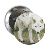 "What Are You Lookin' At? 2.25"" Button (10 pack)"