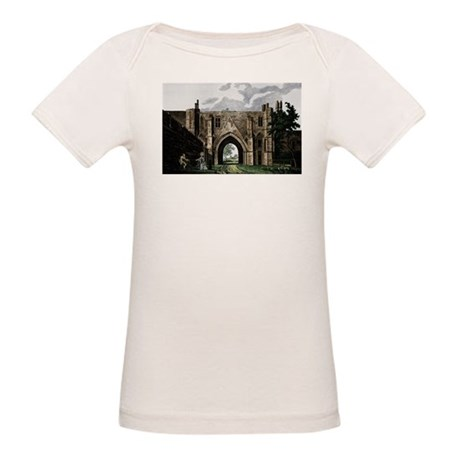 Reading Abbey Organic Baby T-Shirt