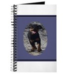 Romping Rottweiler Puppy Journal
