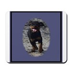 Romping Rottweiler Puppy Mousepad