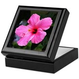 Pink Hibiscus Flower Keepsake Box