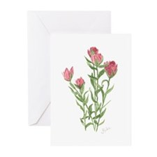 Splitleaf Paintbrush Greeting Cards (Pk of 10)