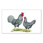 Dominique Chickens Rectangle Sticker 10 pk)