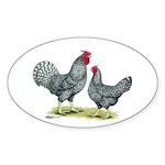 Dominique Chickens Oval Sticker (10 pk)