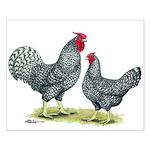 Dominique Chickens Small Poster
