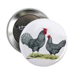 "Dominique Chickens 2.25"" Button (100 pack)"