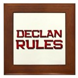 declan rules Framed Tile