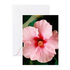 Hibiscus - Greeting Cards (Pk of 10)