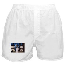 Unique Left Boxer Shorts
