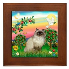 Bright Country / Himalayan Cat Framed Tile