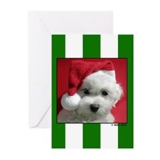 XMASDOGGreeting Cards (Pk of 10)