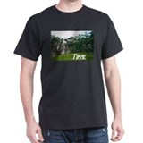 Tikal Courtyard Black T-Shirt