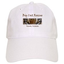 Cute Cat eye Baseball Cap