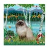 Birches / Himalayan Cat Tile Coaster