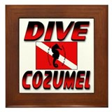 Dive Cozumel (red) Framed Tile