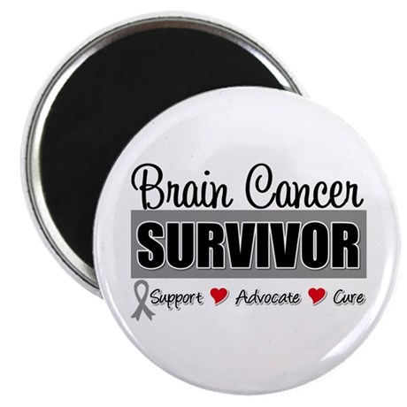 "Brain Cancer Survivor 2.25"" Magnet (100 pack)"