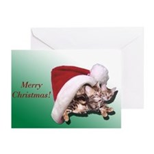 Bengal Kitten Christmas Cards (Pk of 10)