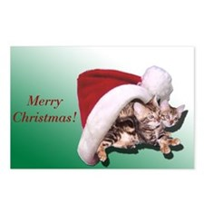 Bengal Kitten Christmas Postcards (Package of 8)