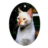 Flame Point Siamese Cat Oval Ornament