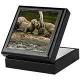 River Otter Keepsake Box