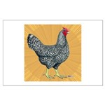 Dominique Chicken Hen Large Poster