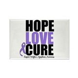 Hodgkins Hope Love Cure Rectangle Magnet (10 pack)