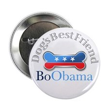 Bo Obama Dog's Best Friend