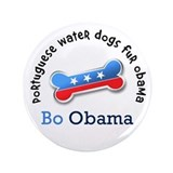 Bo Obama