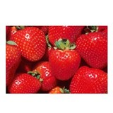 Strawberries Postcards (Package of 8)