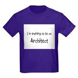 I'm Training To Be An Architect T