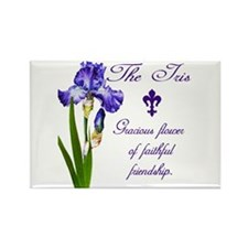 Purple Iris Rectangle Magnet