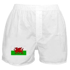 Wales Flag Gear Boxer Shorts