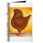 Schietti Modena Pigeon Journal