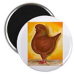 "Schietti Modena Pigeon 2.25"" Magnet (10 pack)"