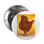 "Schietti Modena Pigeon 2.25"" Button (100 pack"