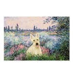 Seine / Scottie (w) Postcards (Package of 8)