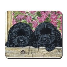 Cute Black newfoundland Mousepad