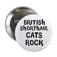 BRITISH SHORTHAIR CATS ROCK Button