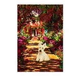 Path / Scottie (w) Postcards (Package of 8)