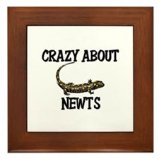 Crazy About Newts Framed Tile