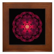 Beach Rose II Framed Tile