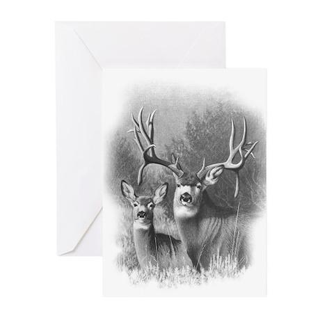 Mule Deer Greeting Cards (Pk of 20)
