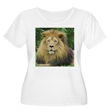 Lion - close up T-Shirt