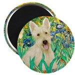 Irises / Scottie (w) Magnet